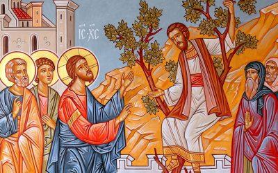 Sur l'évangile de Zachée